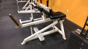 BodyMaster Seated Calf $275