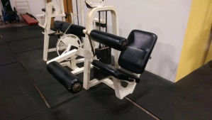 Icarian Seated leg Curl $899