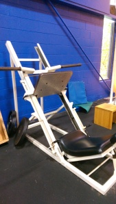 Polaris leg press $799