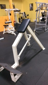 Ram T-Bar Row with chest pad $325